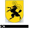 Umzug-Schaffhausen
